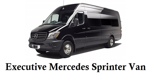 Executive Mercedes Sprinter Van